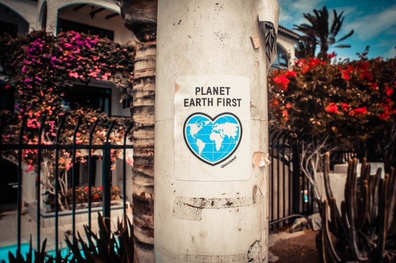 Planet Earth First Vegan