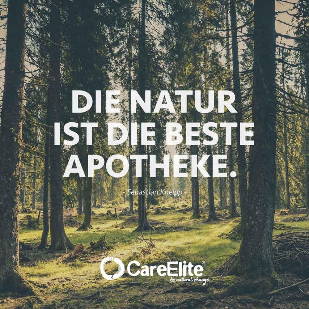Natur ist die beste Apotheke Zitat Kneipp
