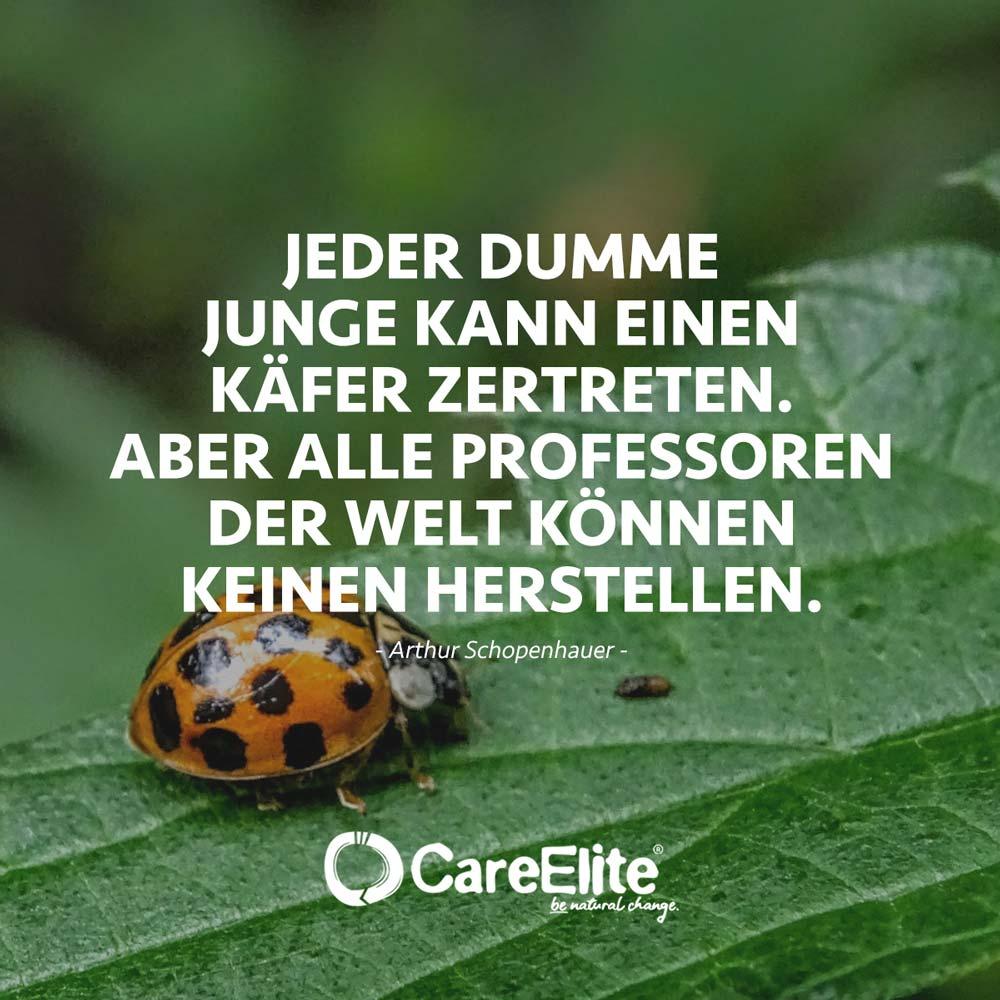 Artenvielfalt Artenschutz Zitate Käfer