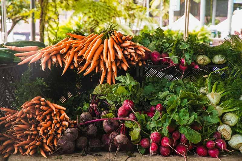 Erzeugnisse aus Bio Landwirtschaft