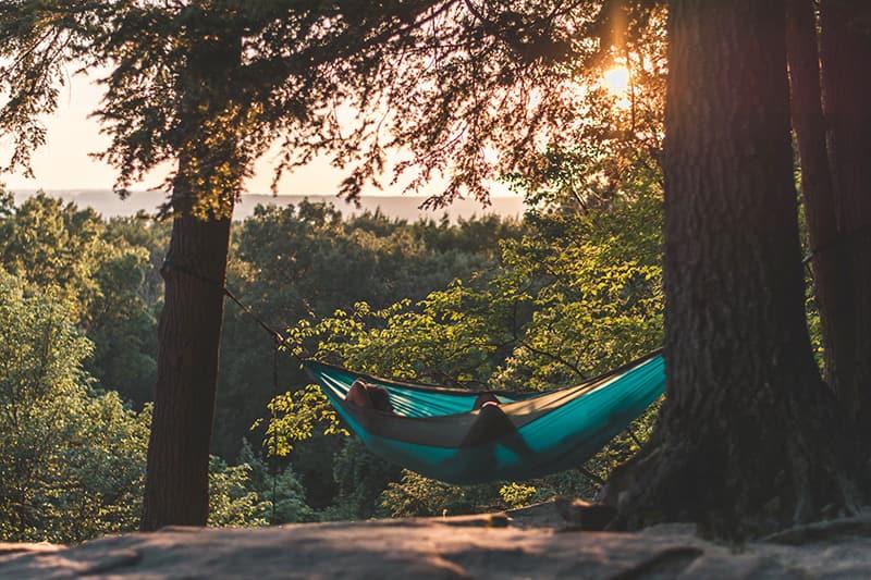 Draußen sein in der Natur - Warum wir uns so wohl fühlen