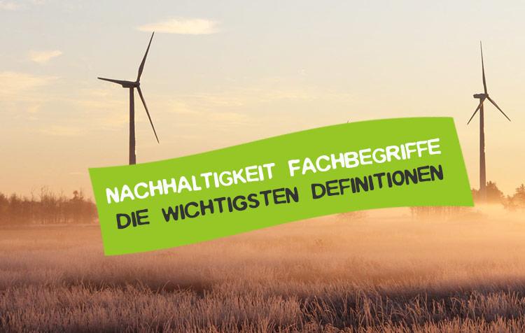 Fachbegriffe der Nachhaltigkeit erläutert