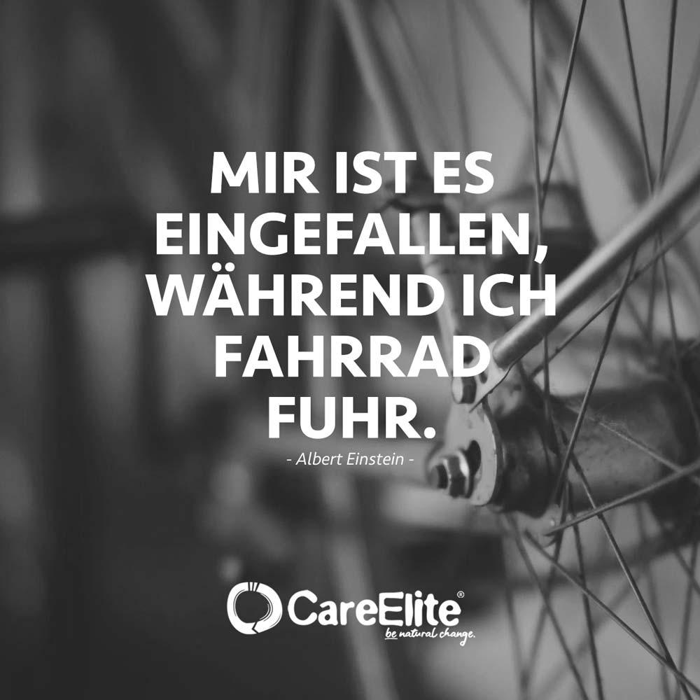 Wissen Fahrrad fahren Zitat