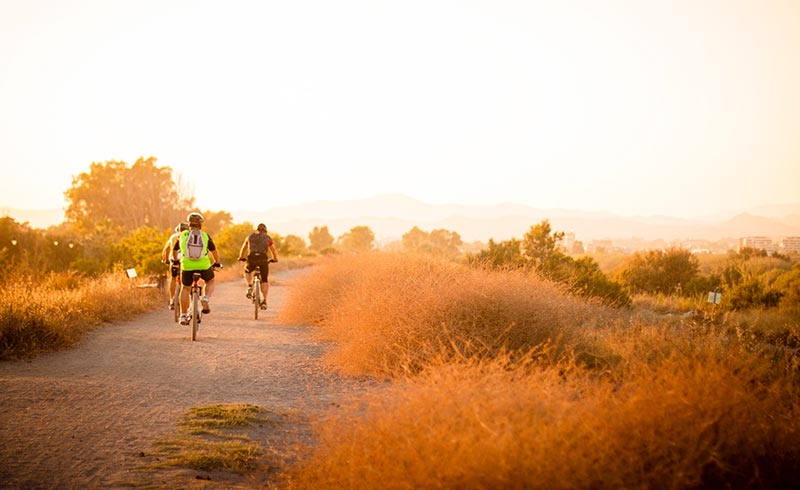 Sprüche über das Radfahren