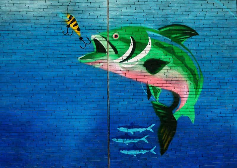 Überfischung aufhalten - Was kann ich tun?