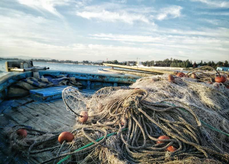 Fischernetz - Warum Veganer keine Fische essen