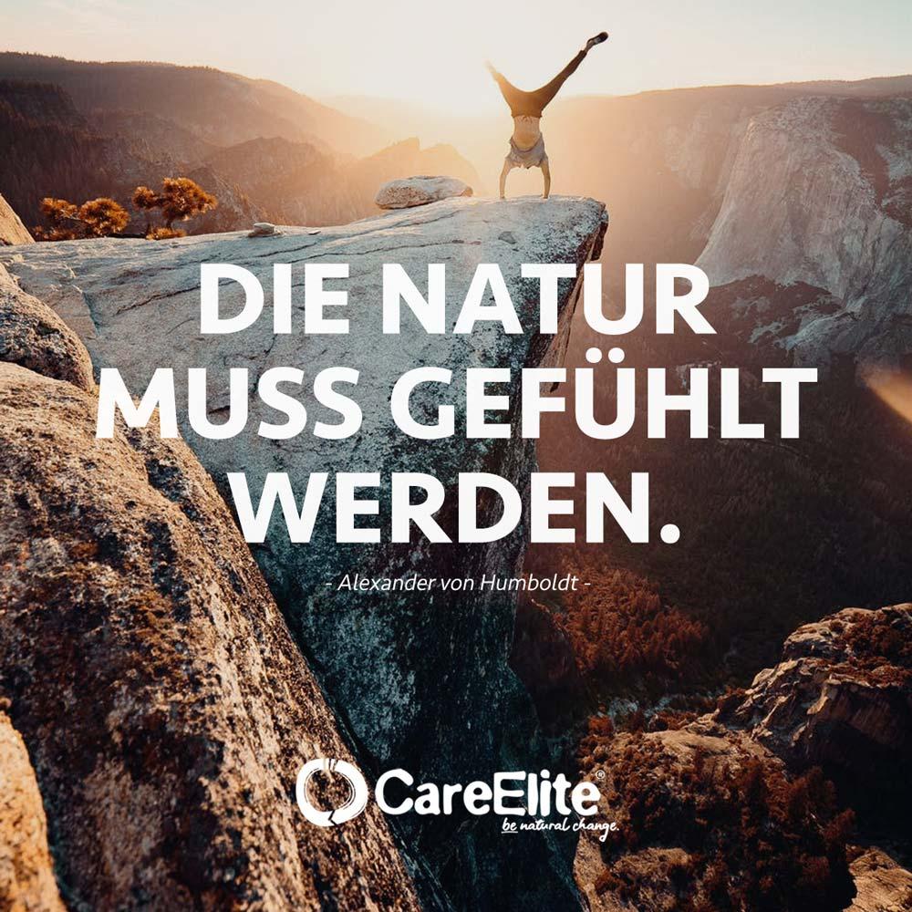 Natur muss gefühlt werden - Humboldt