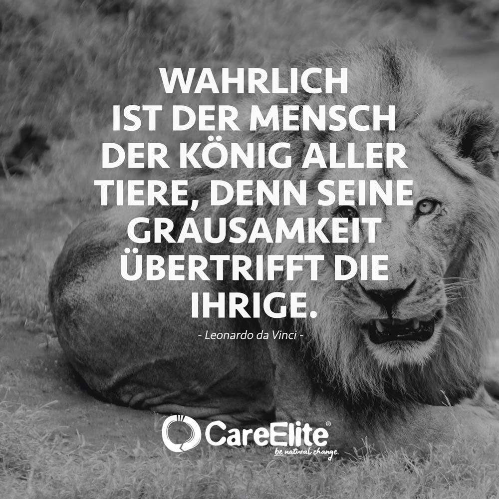 Jagen Zitate Jäger Sprüche König Tiere