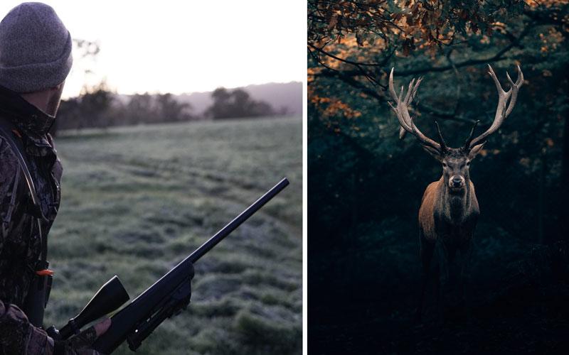 Jagen und Jäger Zitate und Sprüche