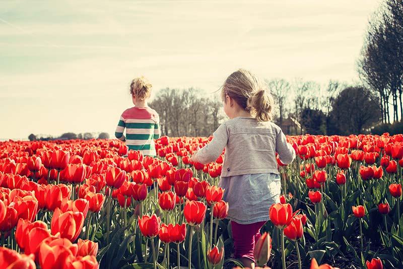 Kinderfrei bleiben - ist das wirklich nachhaltig?