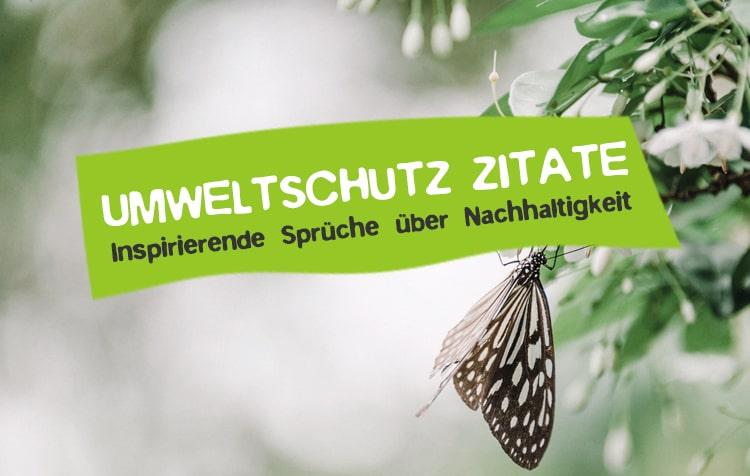 Zitate über Nachhaltigkeit und Umweltschutz