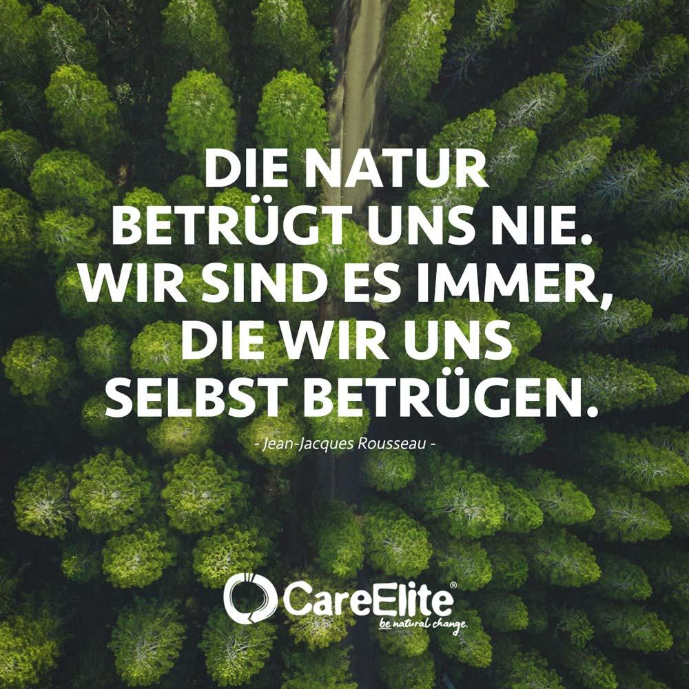 Natur betrügt uns nie - Rousseau Umwelt Zitat
