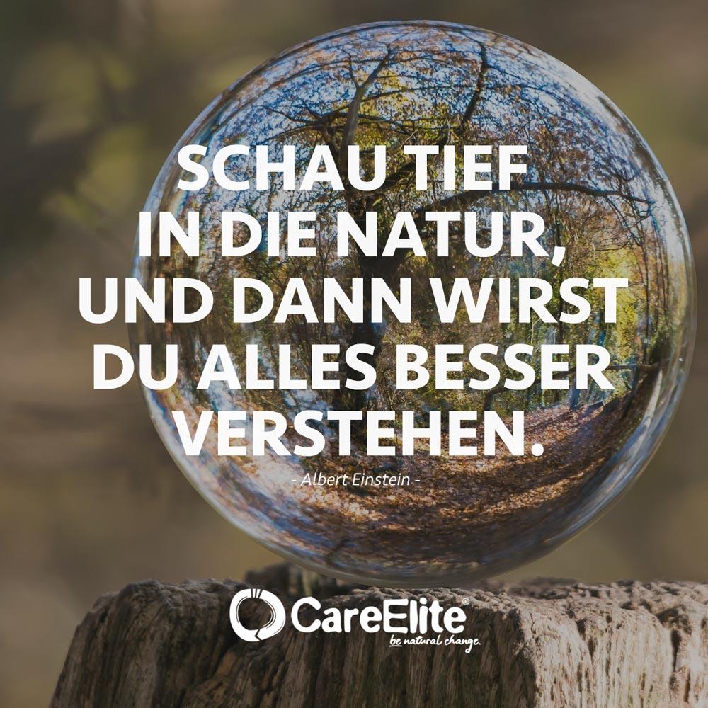 Natur Zitat von Einstein