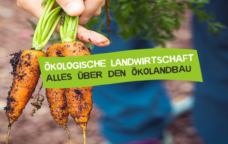 Ökologische Landwirtschaft - Was ist das?