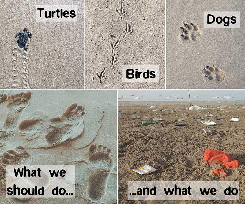 Ökologischer Fußabdruck kurz erklärt