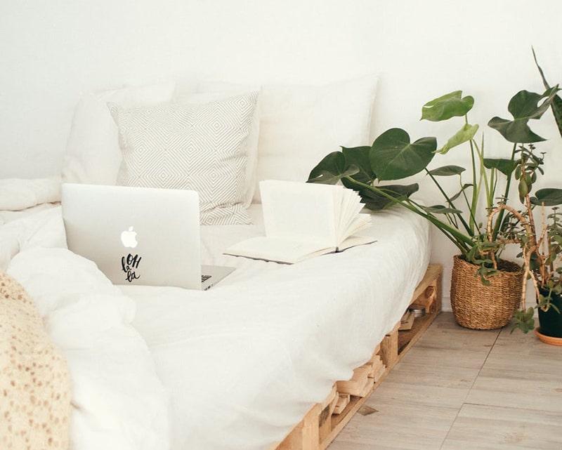 Schlafzimmer Pflanzen fürs Bett