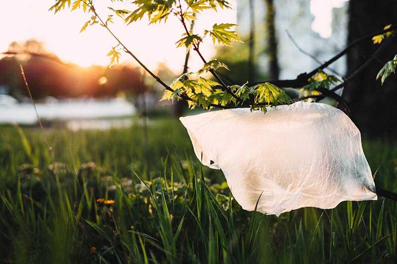 Umweltsünden im Alltag - Einwegplastik