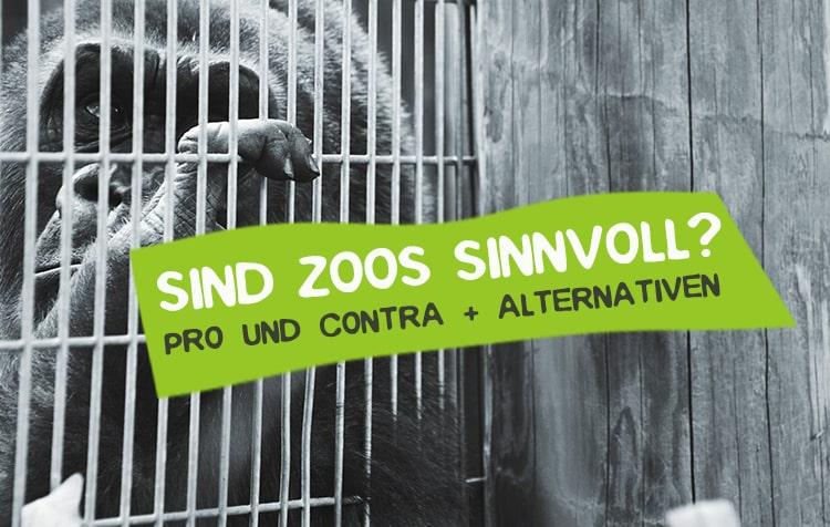 Zoos - Artgerecht und noch zeitgemäß?
