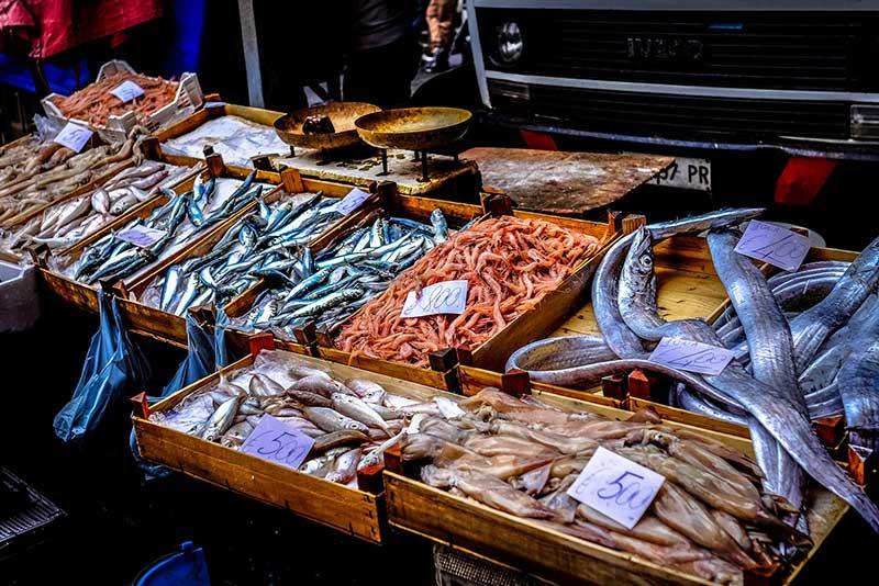 Vegan leben und Überfischung stoppen