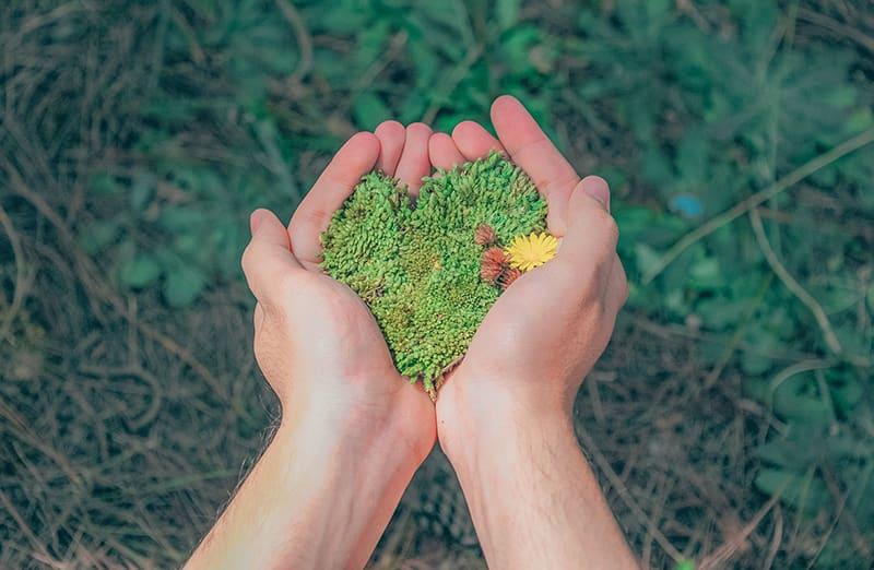 Umweltschutz im Alltag - Garten anlegen