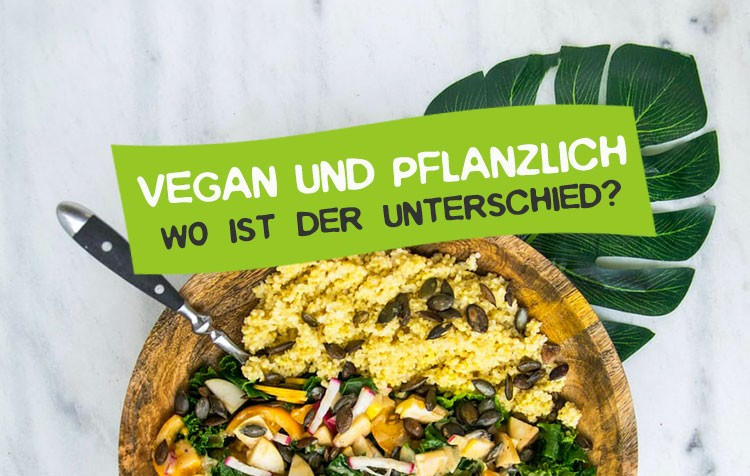 Unterschied Vegan und pflanzlich und plantbased