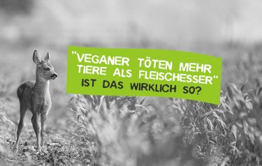 Veganer haben mehr Tiere auf dem Gewissen