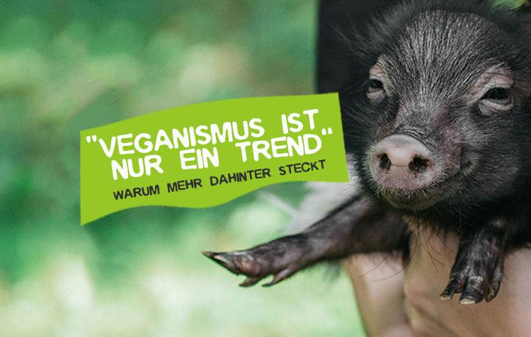 Vegan nur ein Trend - ist er bald wieder vorbei?