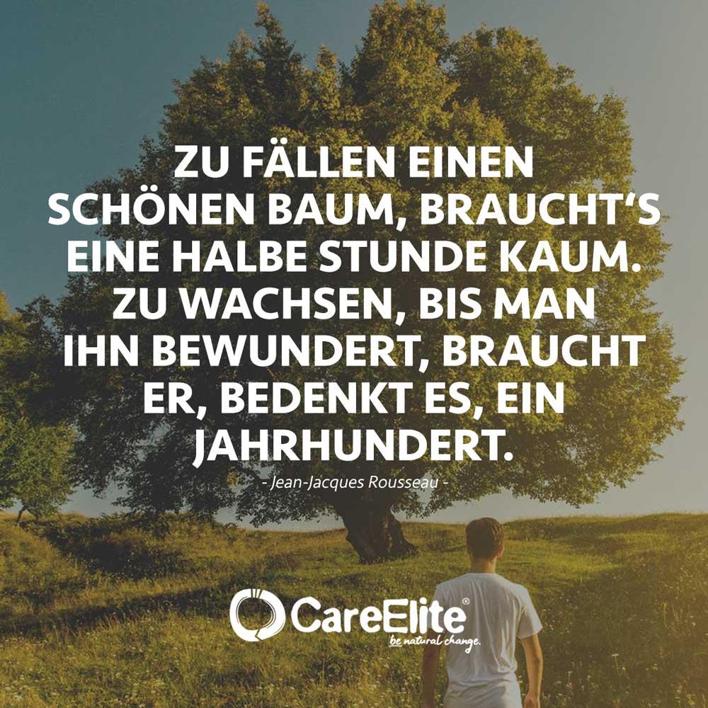Baum Zitat Wald Eugen Roth