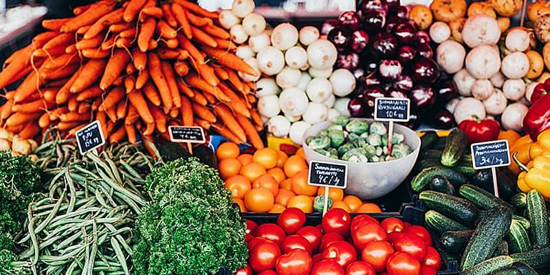 Großes Angebot aus Grund für vegane Ernährung