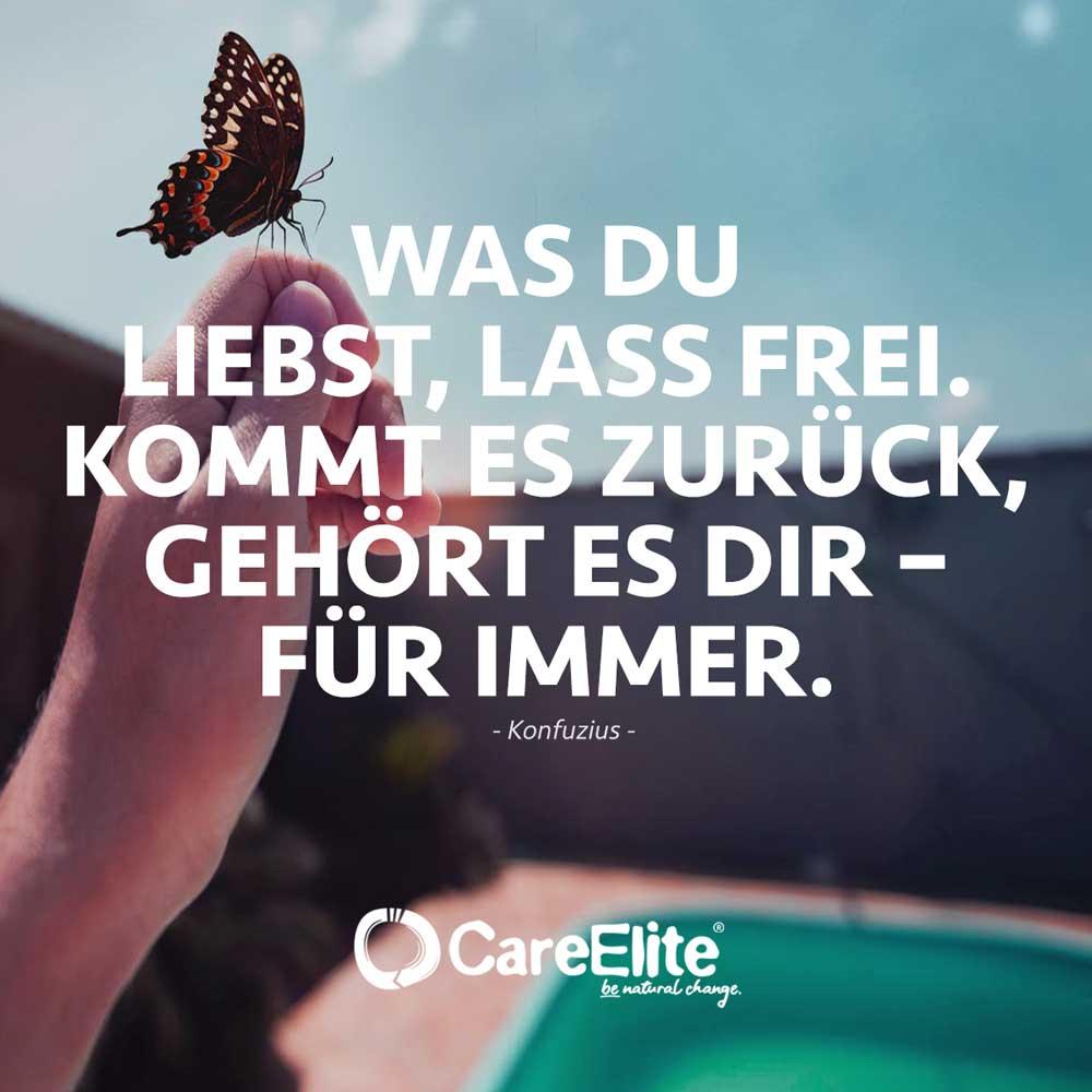 Was du liebst lass frei Zitat Goethe